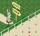 Play free game online Animal step 4. Animal keeper - Play free game online
